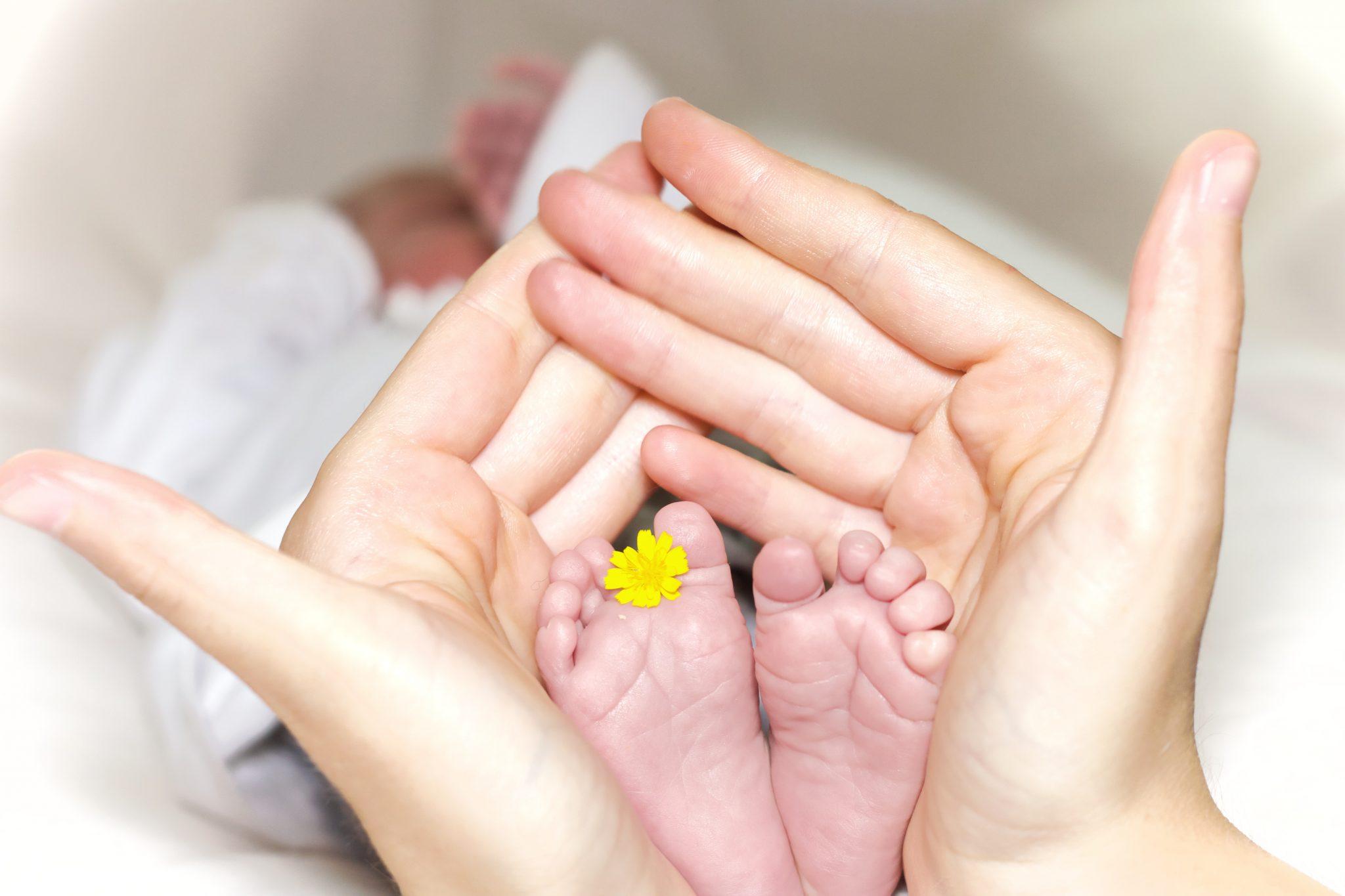 consejos para el buen descanso del peque, ayuda para padres primerizos, manual del bebé, recomendaciones para la cría del bebé